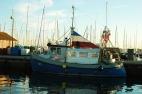 Laboe visser